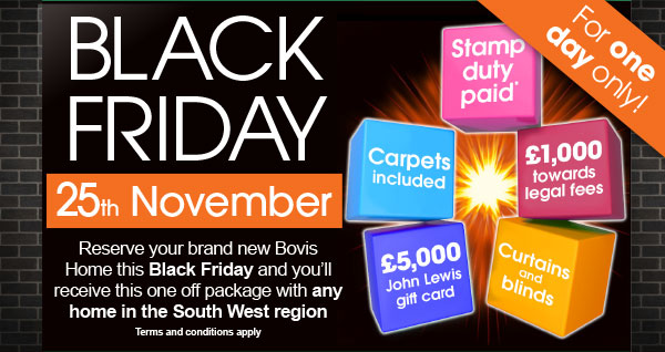 Image for Black Friday offer - for one day only!