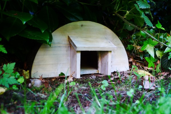 Hedgehog houses are great for nature