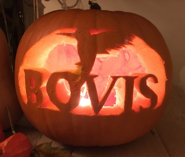 Bovis Homes pumpkin