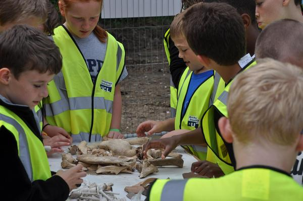 Pupils discover a passion for history