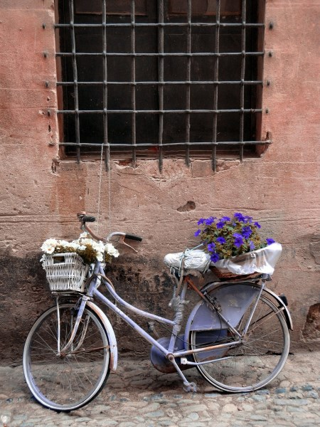 Use a recycled bike as a planter